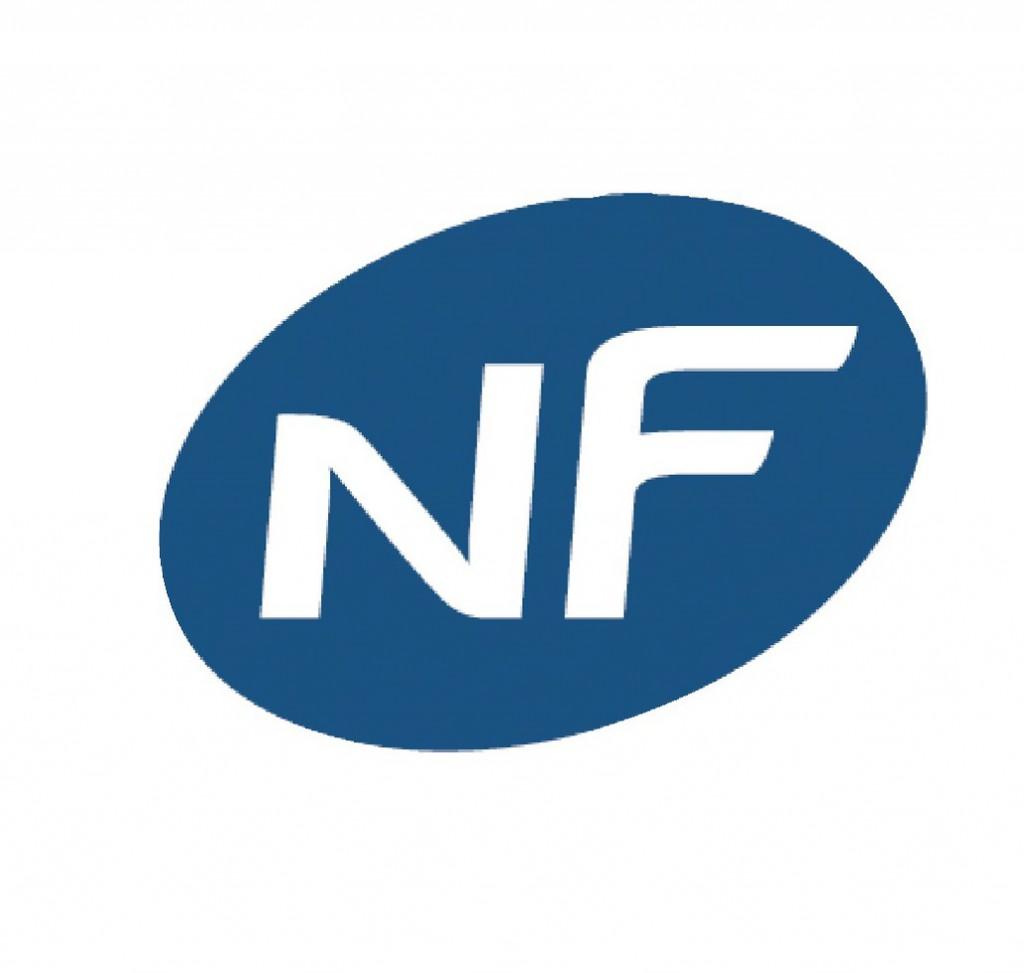 Serrure de sûreté à larder : Série 667 - NF Métalux