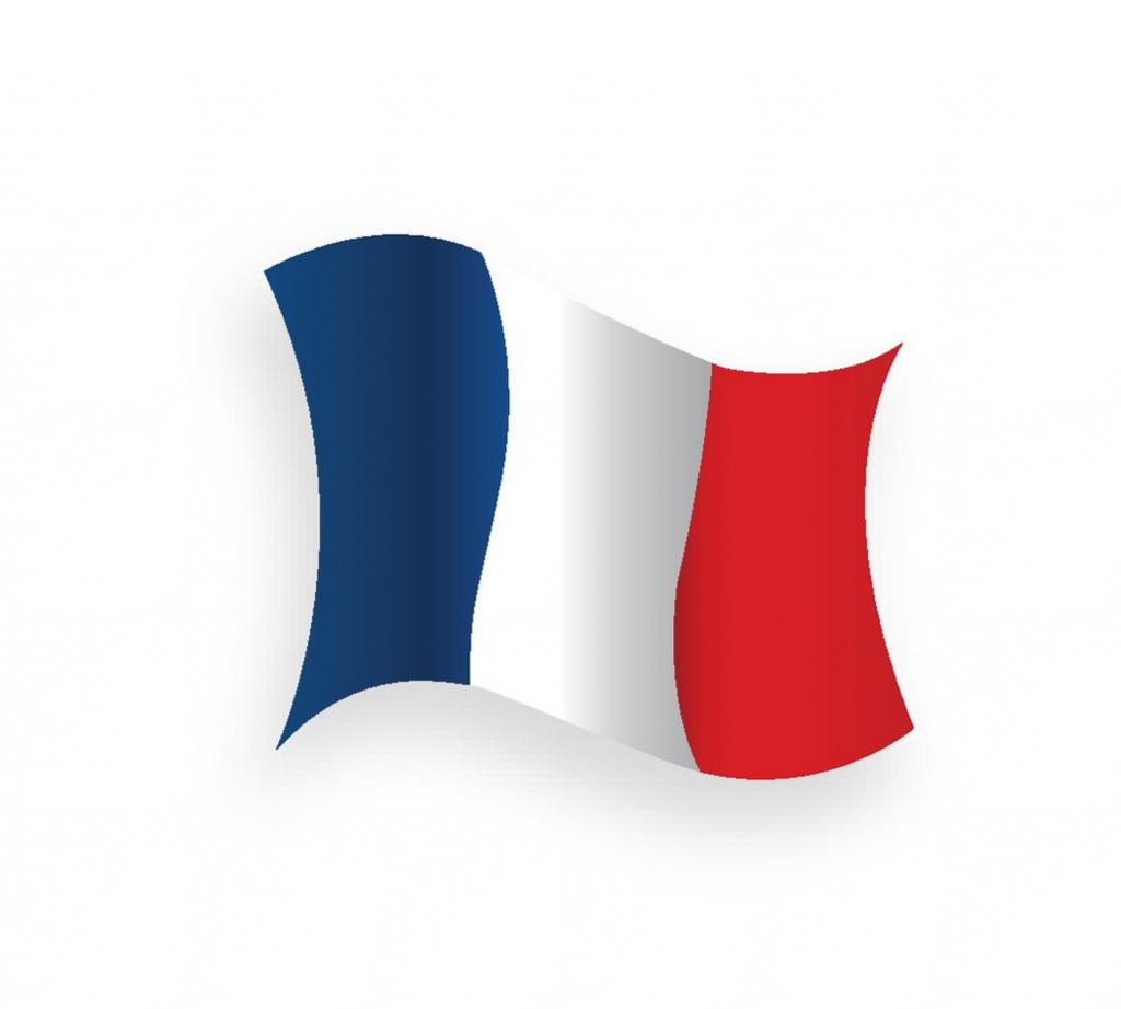 Rouleau : Polyester tissé poils longs - Néolaine