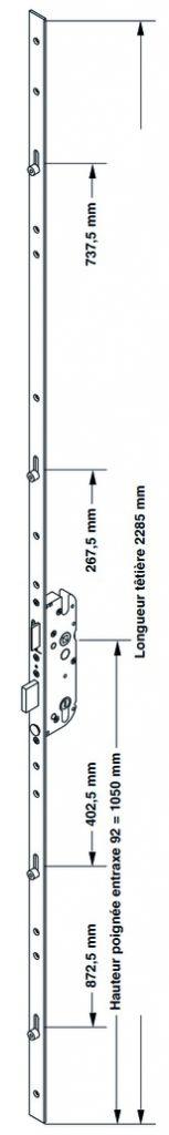 Sûreté multipoint à larder : Sécury