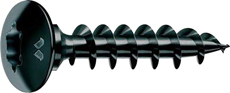 Vis pour penture : Empreinte Torx T 30 - acier noir Neroplus®