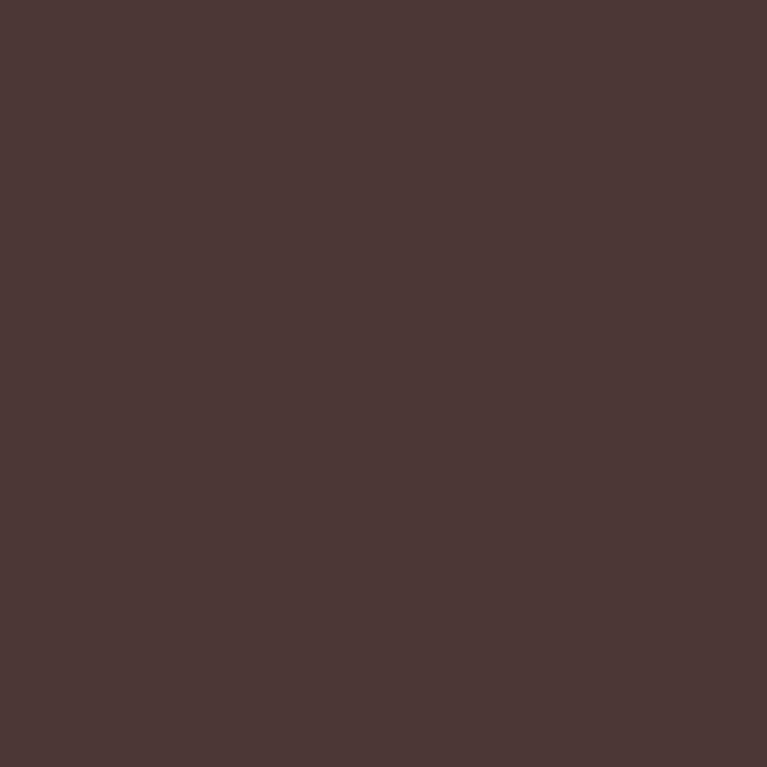 AER.LAQUE RAL 8017 BRUN CHOCOLAT