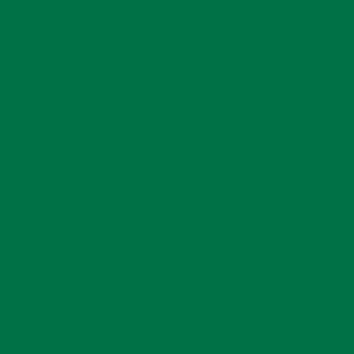 AER.LAQUE RAL 6029 VERT MENTHE